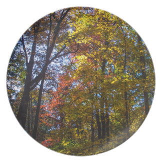 Towering Fall Trees Dinner Plate