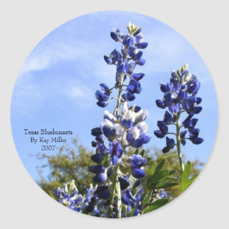 Towering Texas Blue Bonnets Classic Round Sticker
