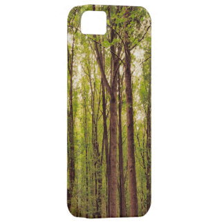 Towering Trees iPhone5 Case