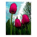 Towering Tulips Postcard
