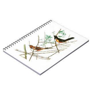 Towhe Bunting John James Audubon Birds of America Spiral Notebook