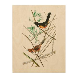 Towhe Bunting John James Audubon Birds of America Wood Print