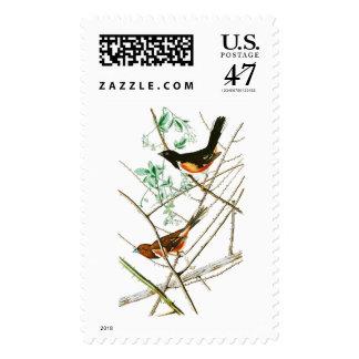 Towhe que golpea los pájaros de John James Audubon Timbres Postales