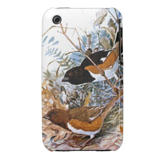 Towhee-male & female iPhone 3 covers