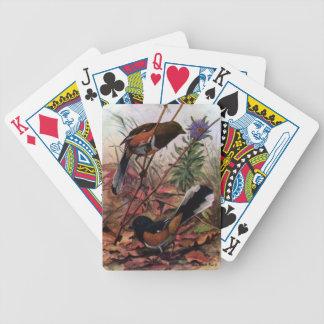 Towhees del este y aster púrpura barajas de cartas