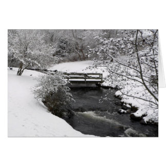 Town Brook in Plymouth, Massachusetts Greeting Card