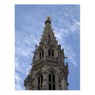 Town Hall, Brussels Postcard