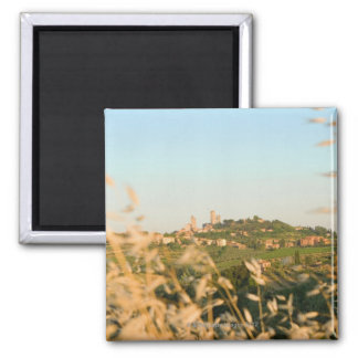 Town on a hill, San Gimignano, Siena Province, 2 Magnet