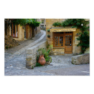 Townscape in Dordogne, France poster