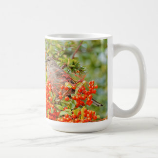 Townsend's Solitaire on the Pyracantha Coffee Mug