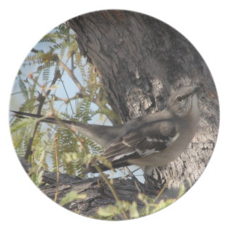Townsend's Solitaire Plate