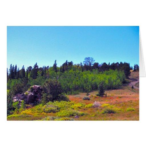 Townsite at Summer - Caribou, Colorado Card