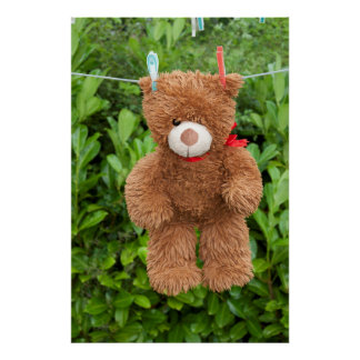 toy brown teddy bear hanging on line poster
