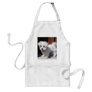 Toy Dogs Adult Apron