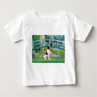 Toy Fox Terrier - Bridge Baby T-Shirt