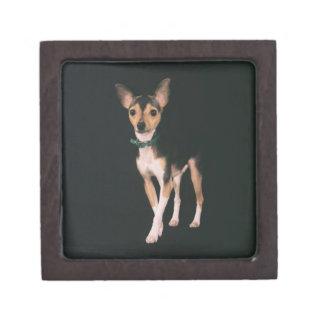 Toy Fox Terrier Keepsake Box2 Premium Keepsake Box
