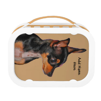 Toy Fox Terrier Lunchboxes