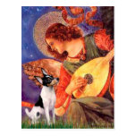 Toy Fox Terrier - Mandolin Angel Postcard