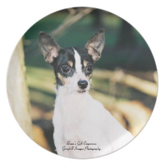 Toy Fox Terrier Party Plate