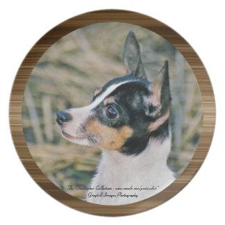 Toy Fox Terrier Dinner Plate