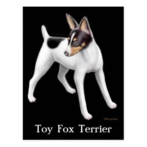 Toy Fox Terrier Postcard