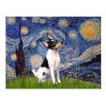Toy Fox Terrier - Starry Night Postcard