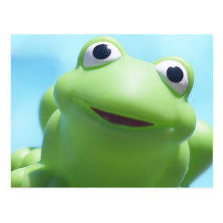 Toy Frog Close-Up Postcard
