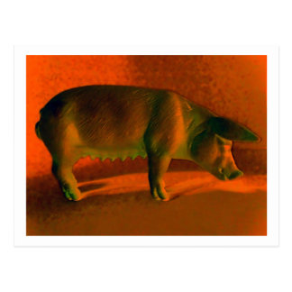 TOY PLASTIC PIG 2 POSTCARD