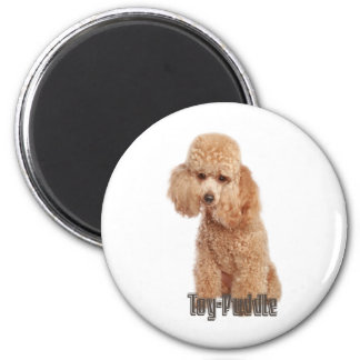 toy poodle breeds 2 inch round magnet