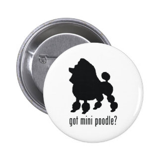 Toy Poodle Pinback Buttons