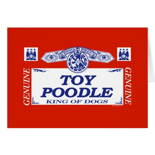 Toy Poodle Card