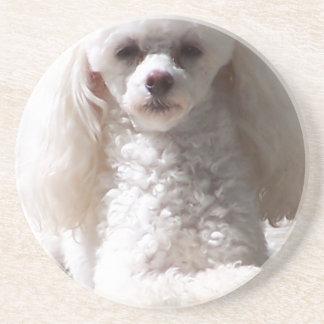 Toy Poodle Coaster
