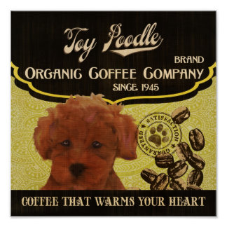 Toy Poodle Dog Art Poster- Organic Coffee Company