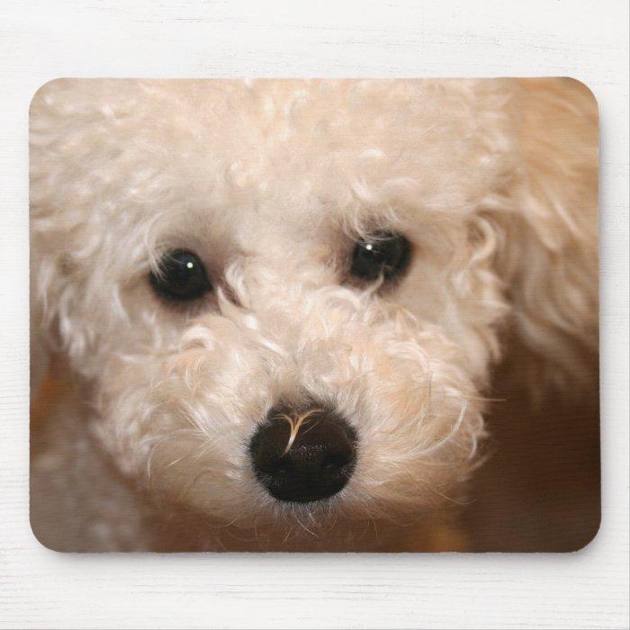 Toy Poodle Puppy Mousepad