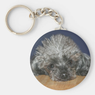 Toy silver poodle keychain