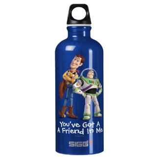 Toy Story 3 - Buzz & Woody Aluminum Water Bottle
