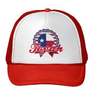 Toyah, TX Mesh Hat