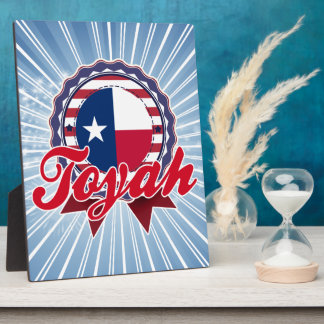 Toyah, TX Plaques