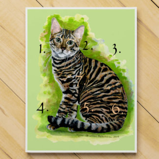 Toyger Countdown Calendars