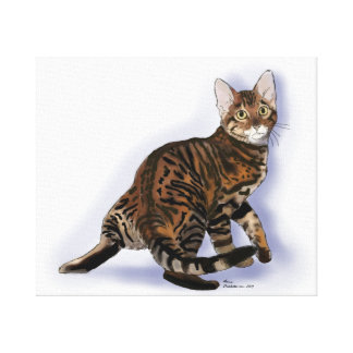 Toyger Turning Stretched Canvas Print