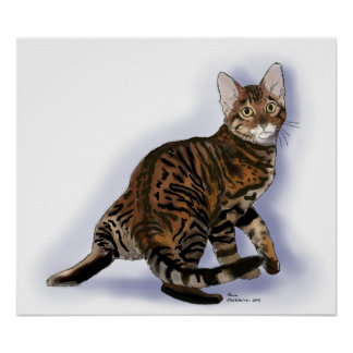 Toyger Turning Poster