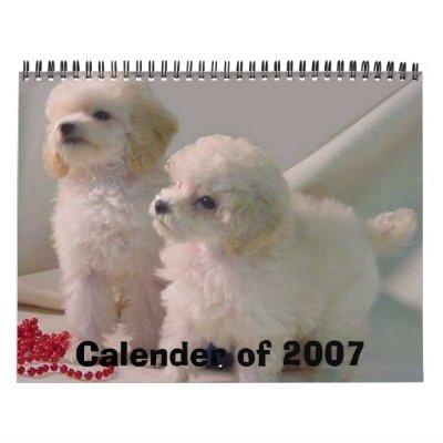 TOYPOODLEPUPStwo_pups1b [1], calendario de 2007
