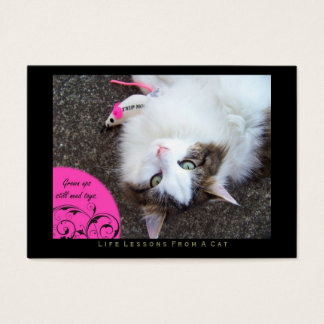 Toys Life Lessons From a Cat ACEO Art Trading Card