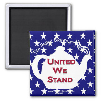 TP0107 United We Stand Magnet