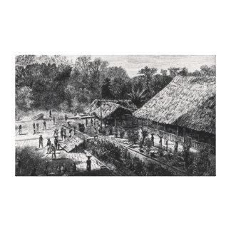Trabajadores en una plantación de café lona envuelta para galerias