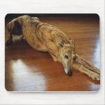 Trabajo del piso del galgo tapete de raton
