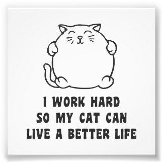 Trabajo difícilmente así que mi gato puede vivir cojinete