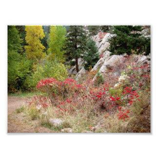 Trabajos del paisaje de Colorado Fotografía