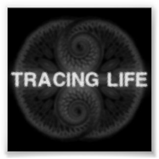 Tracing Life 23x23 in. Poster