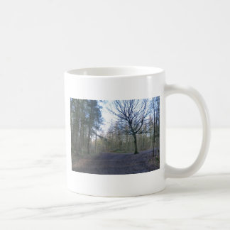 Track Through Delaware Forest in Cheshire Coffee Mug